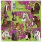 SAMOLEPKY HORSE KONĚ