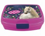 BOX NA SVAČINU HORSE KONĚ