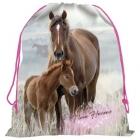 SÁČEK NA PŘEZŮVKY, TĚLOCVIK KONĚ I LOVE HORSES