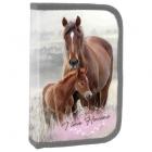 JEDNOPATROVÝ PENÁL PLNĚ VYBAVENÝ S KLOPOU KONĚ I LOVE HORSES