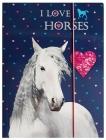 SPISOVÁ SLOŽKA - DESKY NA SEŠITY A4 HORSE KONĚ