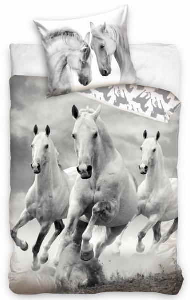 POVLEČENÍ KONĚ HORSES