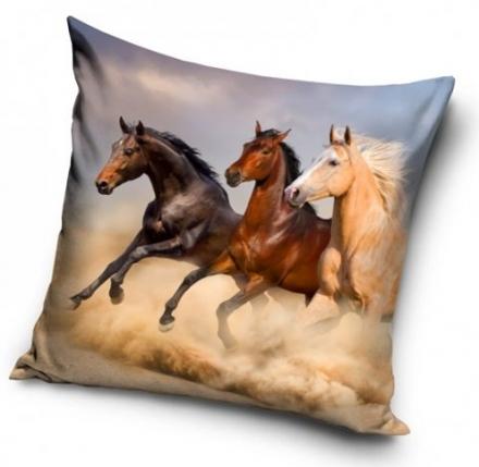 POVLAK NA POLŠTÁŘ KONĚ HORSES